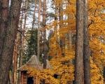 Лесная Сказка банкетный зал база отдыха «Лесная Сказка» Воронеж